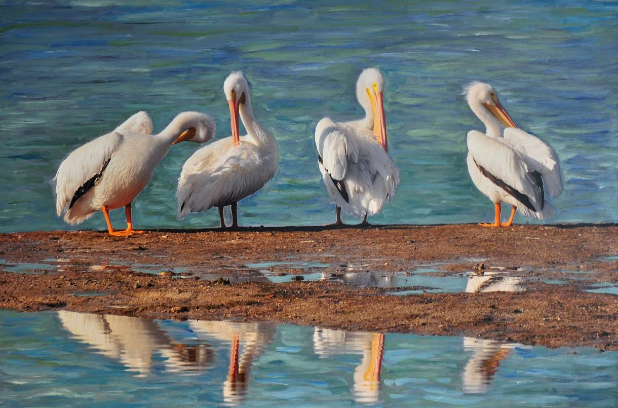 PELICANS Painting by Michael Moukios