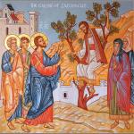The Sunday of Zacchaeus